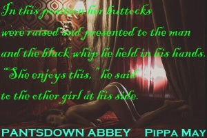 'Pantsdown Abbey': see the five star reviews on Amazon